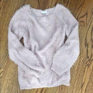 Blush Soft Fuzzy Teddy Bear Tunic Sweater